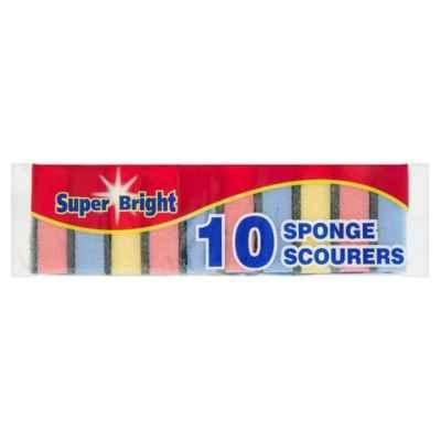 SPONGE SCOURERS 10PK