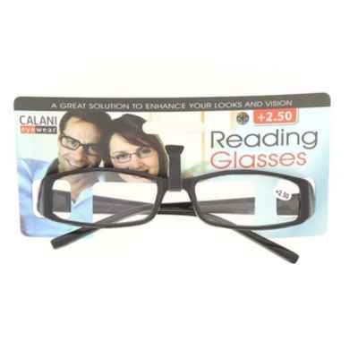 READING GLASSES +2.50 (R)